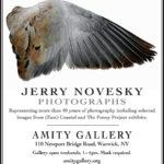 Jerry Novesky Photographs